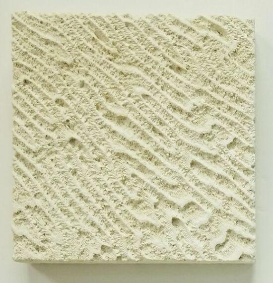Coral Print Texture